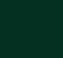 Bioforest Logo